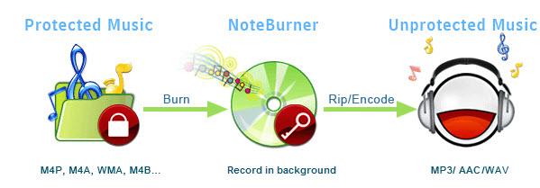 Wie Entfernen Sie M4p Drm Und Konvertieren Sie M4p In Mp3 Auf Mac Noteburner Konvertieren Mac Und Musik