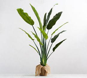 Faux Potted Greater Burdock Houseplant Faux Plants