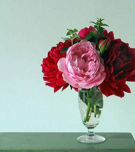 Pink Rose + Red Peonies