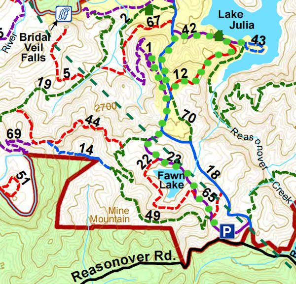 Dupont State Forest Map DuPont State Forest Hiking Map | Travel Plans on a Dime | Dupont
