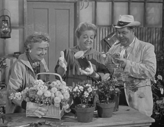"""The Morrison sisters sell """"elixer"""" to Otis. - Episode: Alcohol and Old Lace    The andy griffith show, Andy griffith, Online photo gallery"""