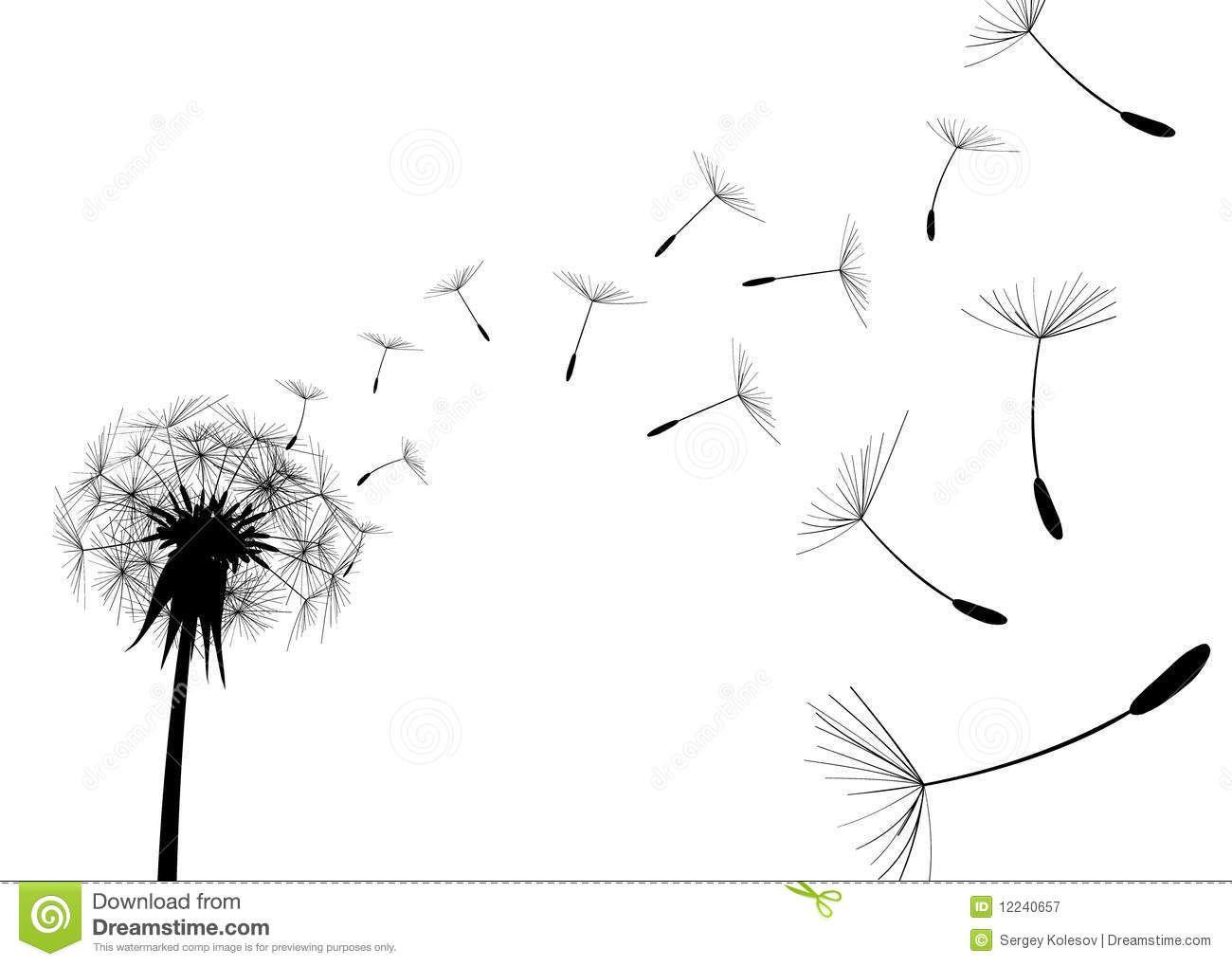 Dandelions Stock Photography