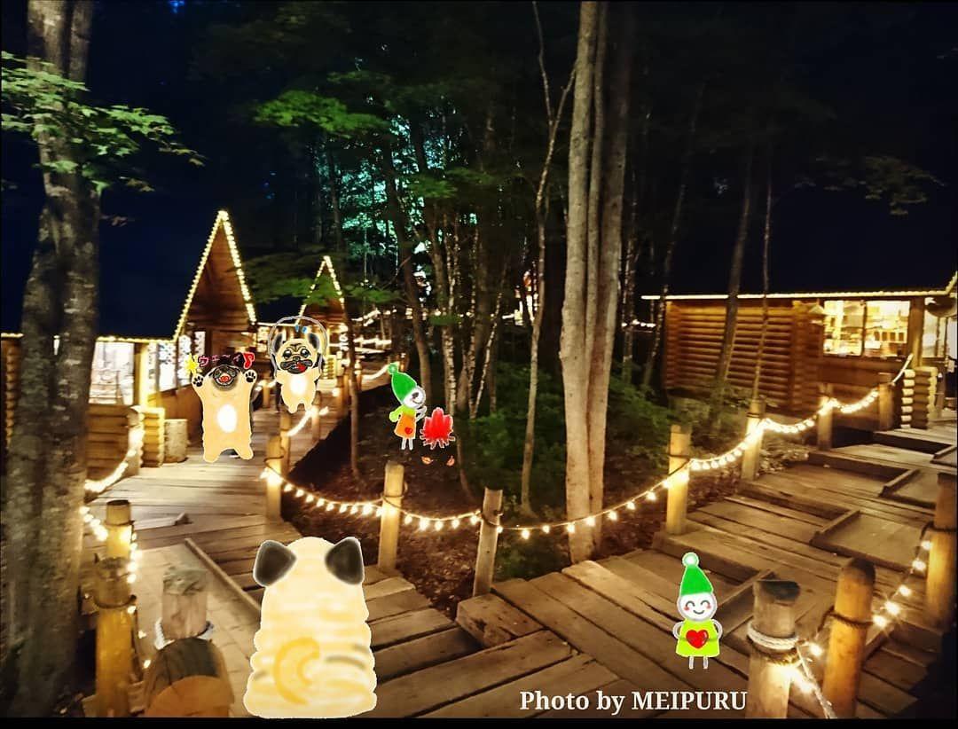 🌳🏠🌳🏠🌳🏠🌳🏠🌳🏠🌳 #ニングルテラス に 倉本聰監督が描いた #点描画 が展示されたお部屋が有ったので 夜の静けさの中 時を忘れてじっとみとれていたのだワン🐶💕 #amazing とは こういうものに出会った時に使う言葉なのだろうワーン🐶💕 . photo by @go_meipuru . #新富良野プリンスホテル #北海道  #ほっかいどう #hokkaido  #hokkaidotrip  #hokkaidolikers #hokkaidosgram #旅 #旅の写真 #travel #travelphotography #travelersnotebook #travelgram #富良野 #furano  #ガーデン #garden #forest #forest🌲  #森 #風のガーデン  #forestgarden #gardens  #gardensofinstagram #pug  #pugs  #pugslife