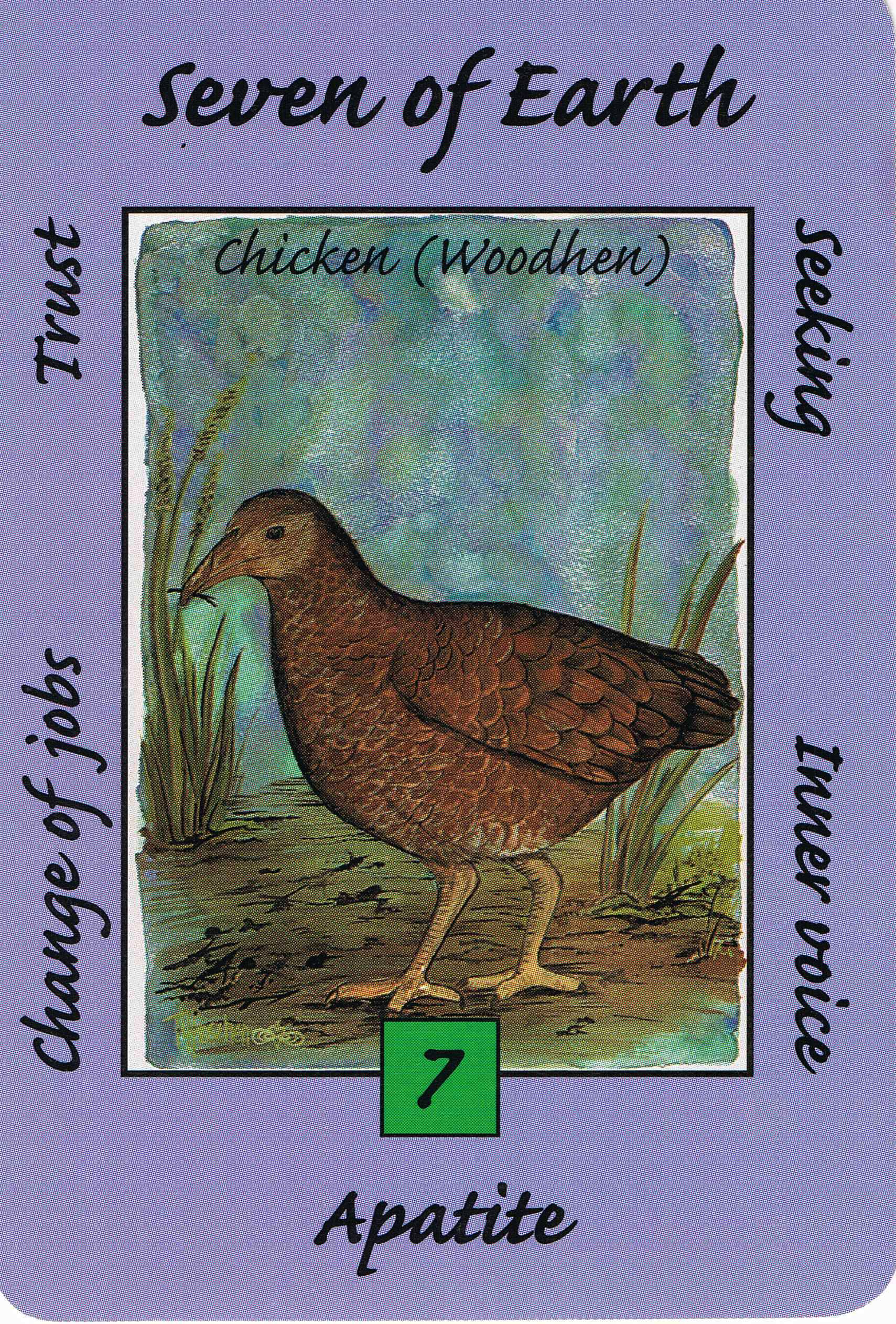7 earth chickenhen australian animal tarot deck