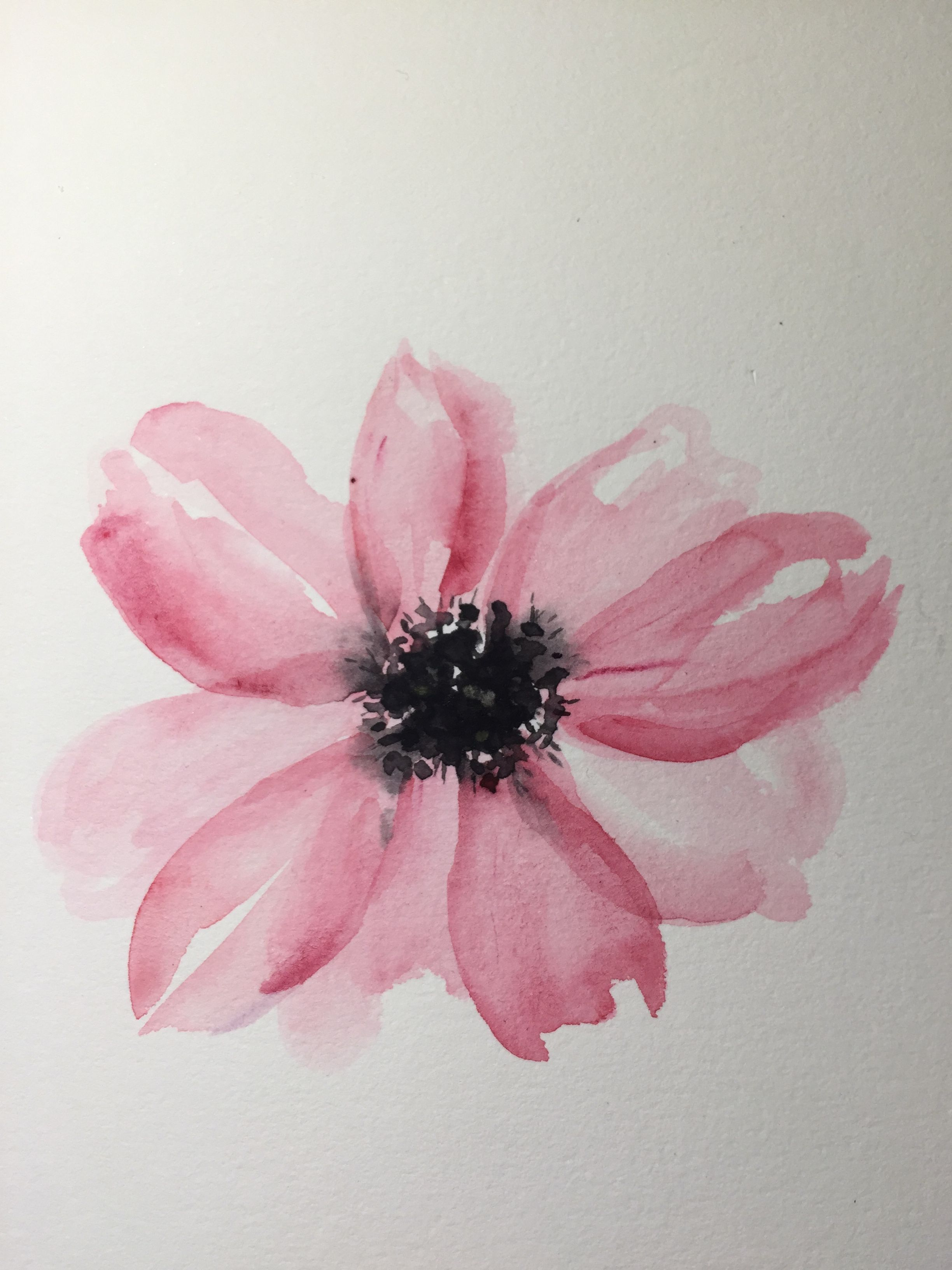 Simply Beautiful Beginning Watercolor Flower Painting Floral