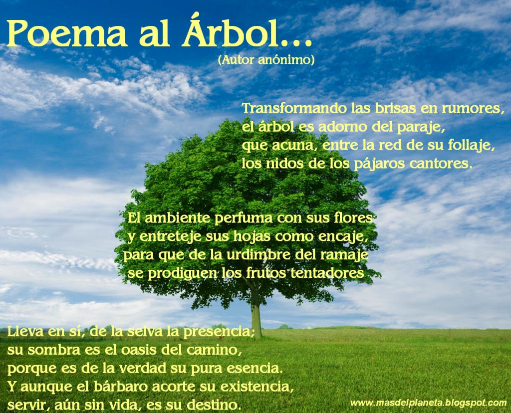 Poema Al Arbol Arbol Frases Día Del Arbol Arboles