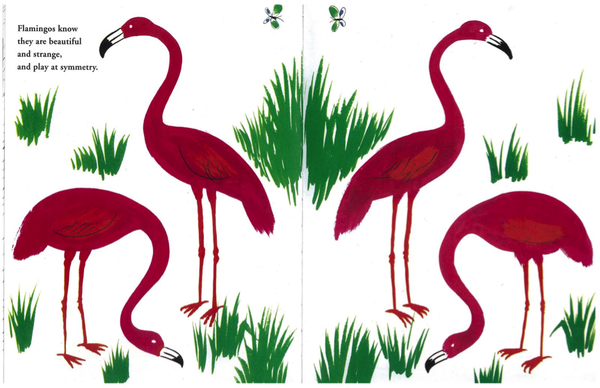 Zoo Animals In Picture Books Il Sung Na The Opposite Zoo Flamingo Art Of Zoo Bruno Munari