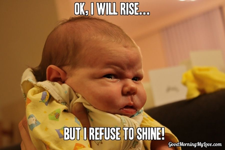 Funny Good Morning Memes Funny Good Morning Memes Funny Mom Memes Morning Memes