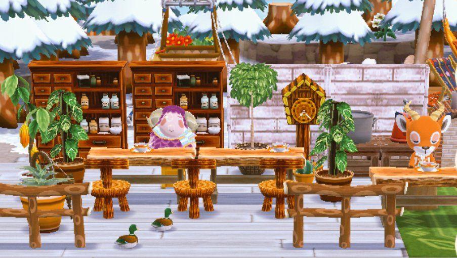 キャンプ 場 森 ポケ