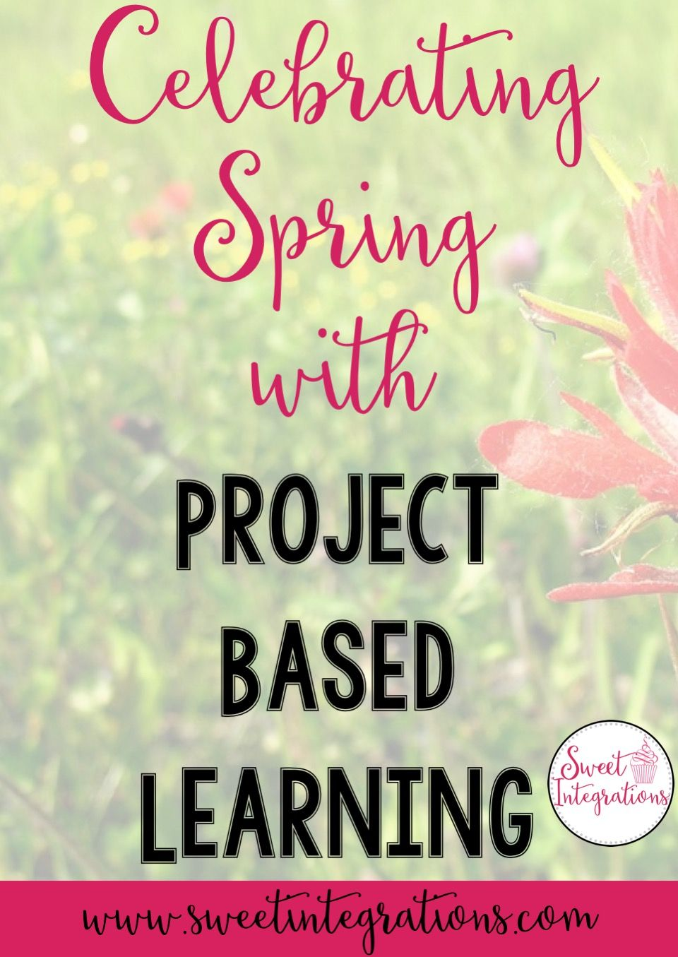 Spring Project Based Learning Environment Animals & Economics