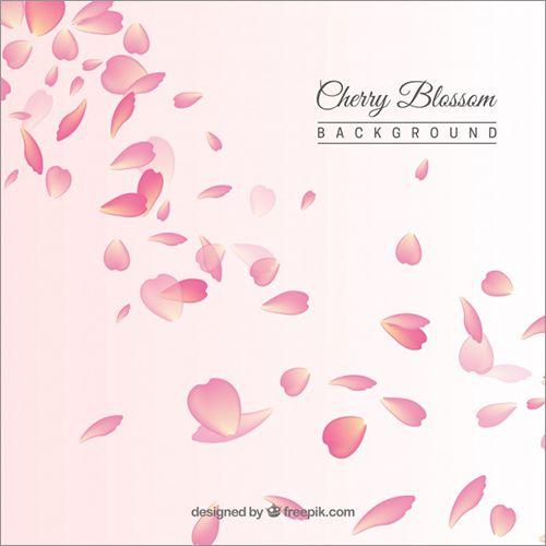 桜の花や花びらのイラストのフリー素材 Illustrator Board 桜