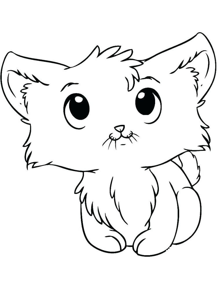 Cute Baby Kitten Coloring Pages The Kitten Is A New Born Little Cat This Term Is Used For Cats Under The Age Kittens Cutest Baby Baby Kittens Sleeping Kitten