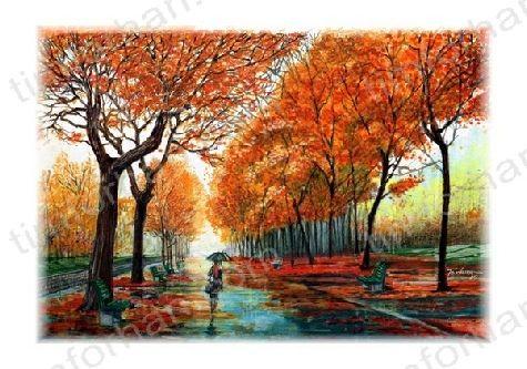 Riverwalk - woman walking in park on tree lined sidewalk ...