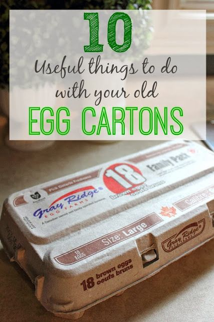 It S Amazing Just How Many Ways You Can Use The Humble Egg Carton Fun Tips Egg Carton Egg Carton Crafts Recycled Crafts