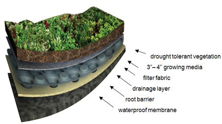 Green Roof System Components Roof Garden Garden Tiles Green Roof