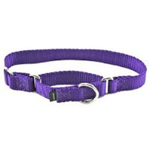 Petsafe Martingale Collar 38 Petite Deep Purple More Info Could Be Found At The Image Url Note It Is Af Martingale Dog Collar Martingale Collar Deep Purple