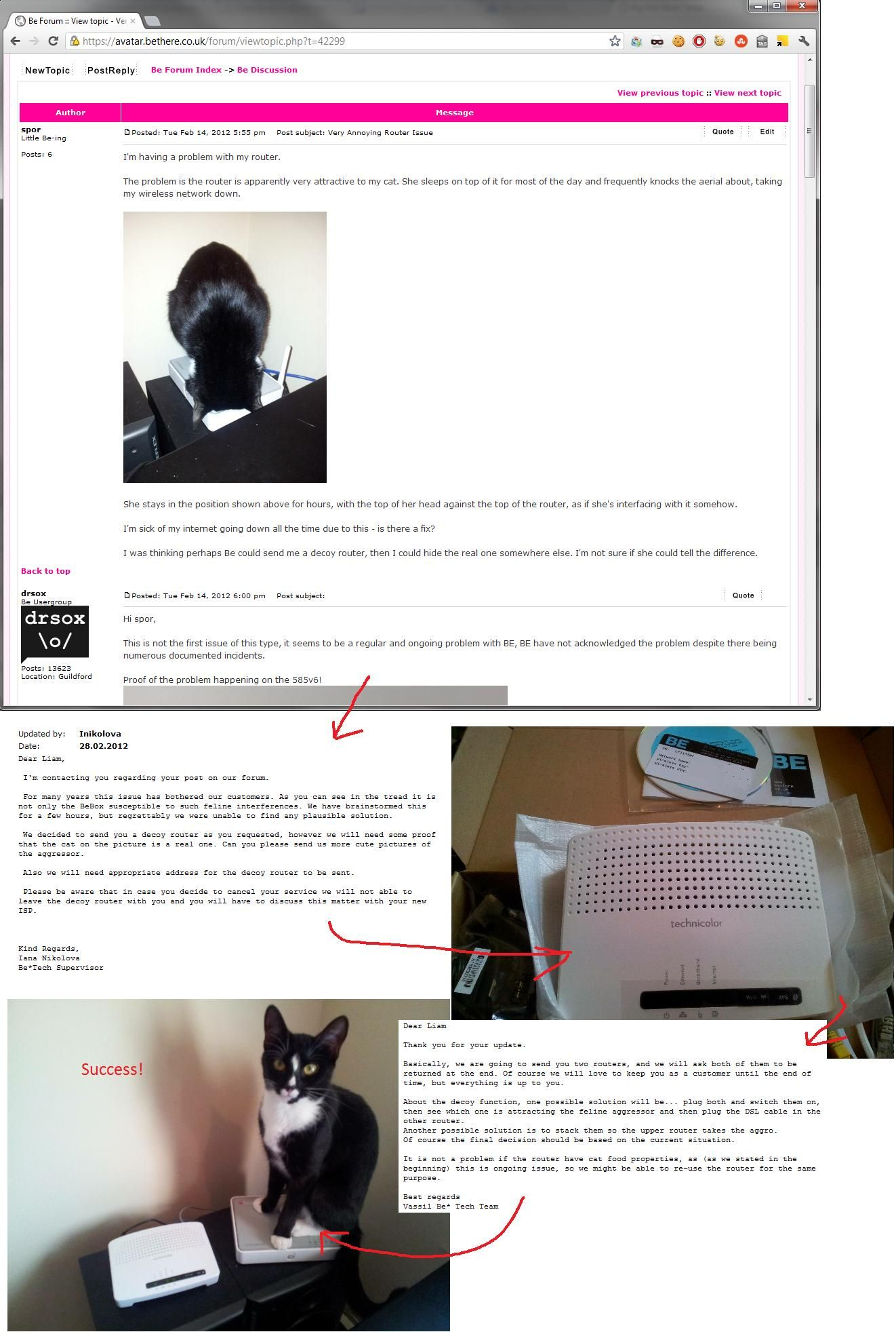 Cat messes up router customer complains and customer