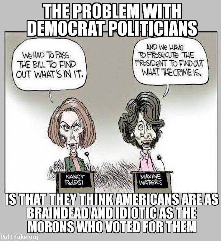 Cartoon IDs the REAL Problem With Arrogant Democrats | The Federalist Papers