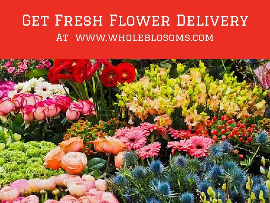 Whole Blossoms Is The Best Online Flower Shop And Famous For Its