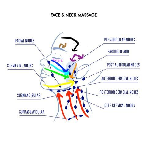 How To Do Lymphatic Drainage: Face & Neck (with Vi