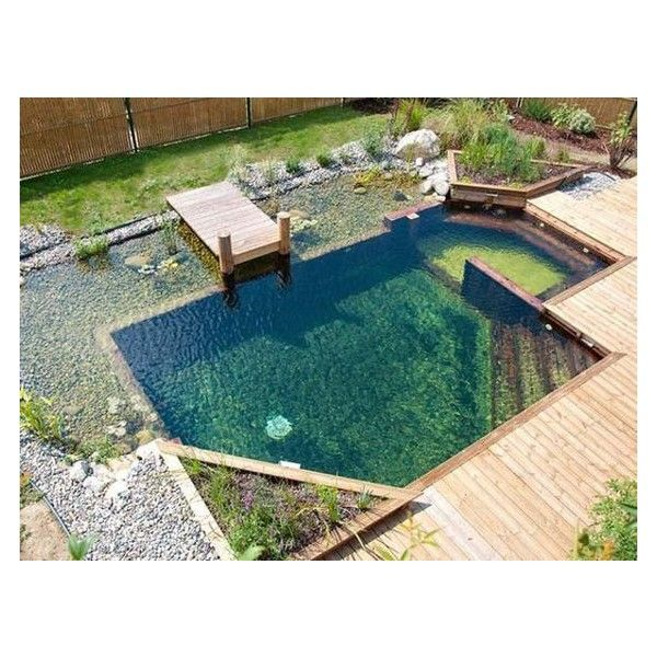 Attractive 0 Dyi Swimming Pool, Dyi Pool, Natural Swimming Ponds, Backyard Plants,  Ponds