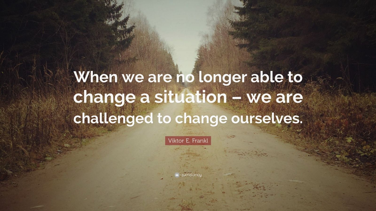 "Viktor Frankl Quotes Captivating Viktor Efrankl Quote ""When We Are No Longer Able To Change A"