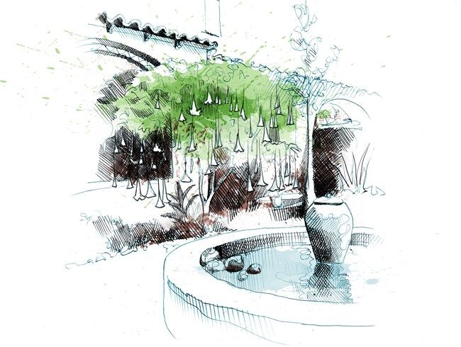 8 illustrated design rules for residential gardens for Garden design sketches