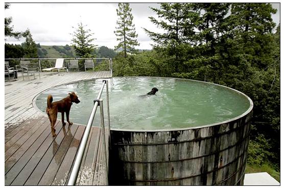 Water tank pool kellie dolzynski for the kids home - Convert swimming pool to rainwater tank ...