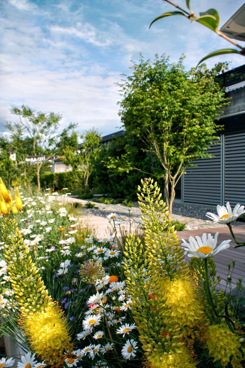 Mischpflanzung: Naturnah Garten Mit Holzdeck Und Mischpflanzung   PARCu0027S  Gartengestaltung