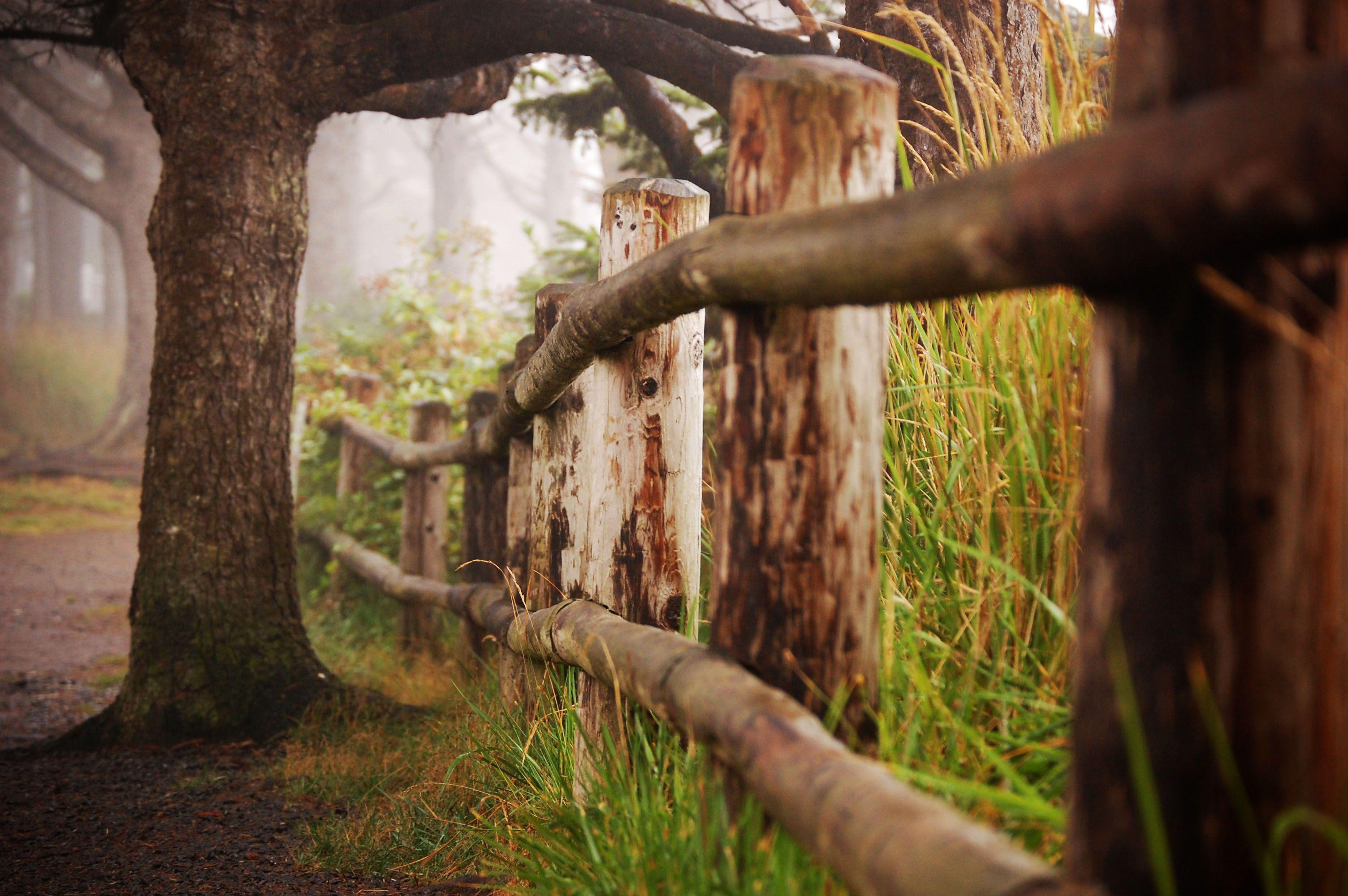 Arcadia Beach, Oregon foot path. I love this old fence