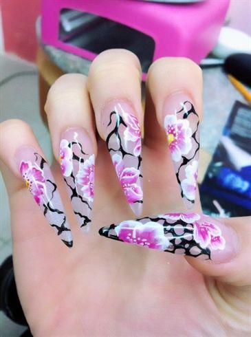 University Of Essex Nails Stiletto Nails Nail Art