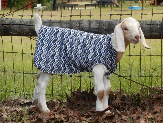 Custom Waterproof Fleece Goat Sheep Lamb Kid Sweater Coat Blanket Free Ship Goats In Sweaters Goat Kidding Goats