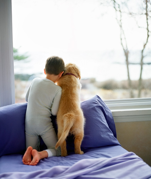 Picture Of Little Boy And Dog Praying