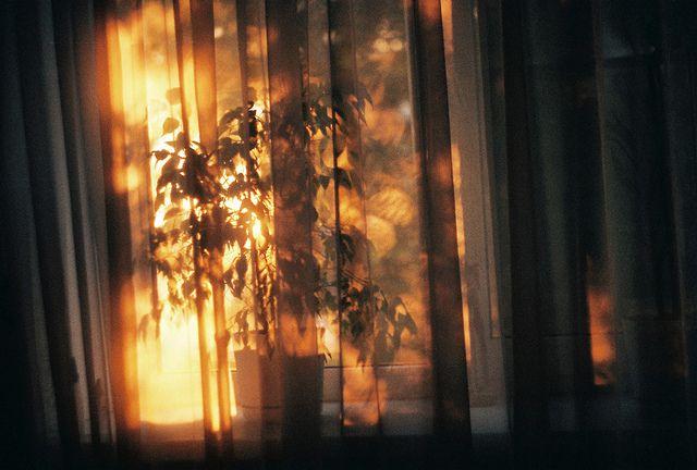 Morning sunshine...