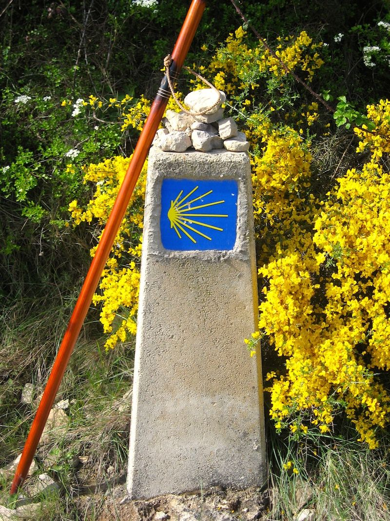 Camino de santiago the scallop shell is the symbol of this popular camino de santiago the scallop shell is the symbol of this popular pilgrimage to the biocorpaavc Image collections