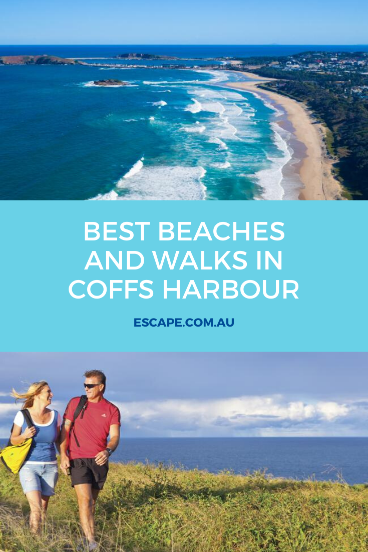 Discover Coffs Harbour Nsw In 2020 Coffs Harbour Beach Visit Australia