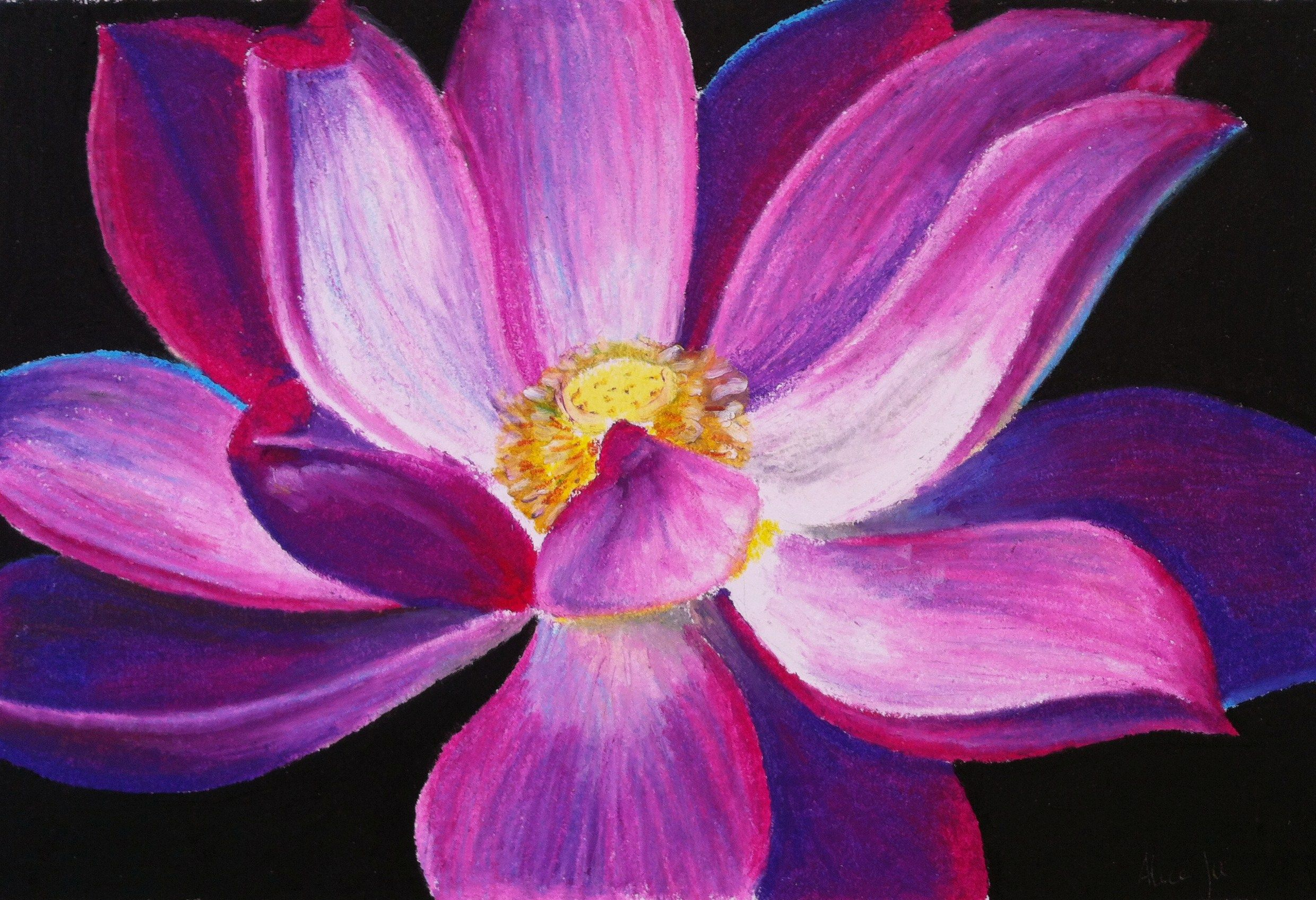 Oil pastel drawing flowers google search art projects pinterest oil pastel drawing flowers google search izmirmasajfo