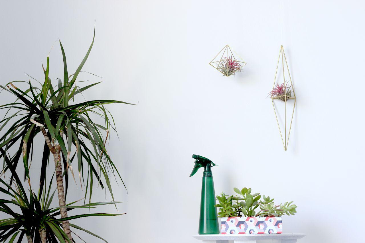 Mon Petit Jardin D Interieur With Images Garden Wall Decor