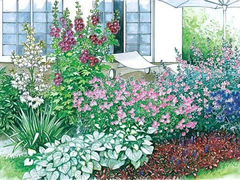 ein terrassenbeet zum nachpflanzen garten pinterest blumenbeete terrasse und pflanzplan. Black Bedroom Furniture Sets. Home Design Ideas