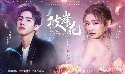 Beautiful Reborn Flower 彼岸花 Korean Drama Tv Japanese Drama Chines Drama