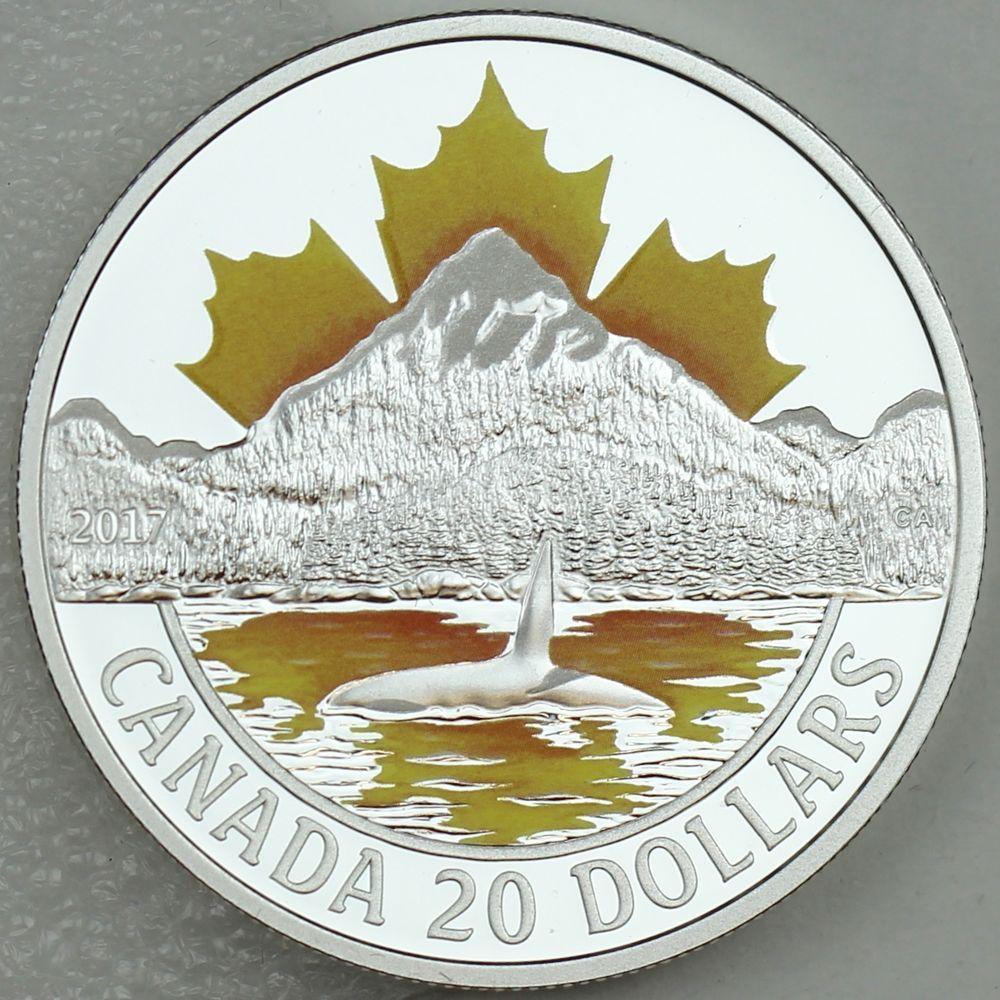Canada 2013 $10 Canadian Summer Fun 1//2 oz Pure Silver Matte Proof O Canada #5
