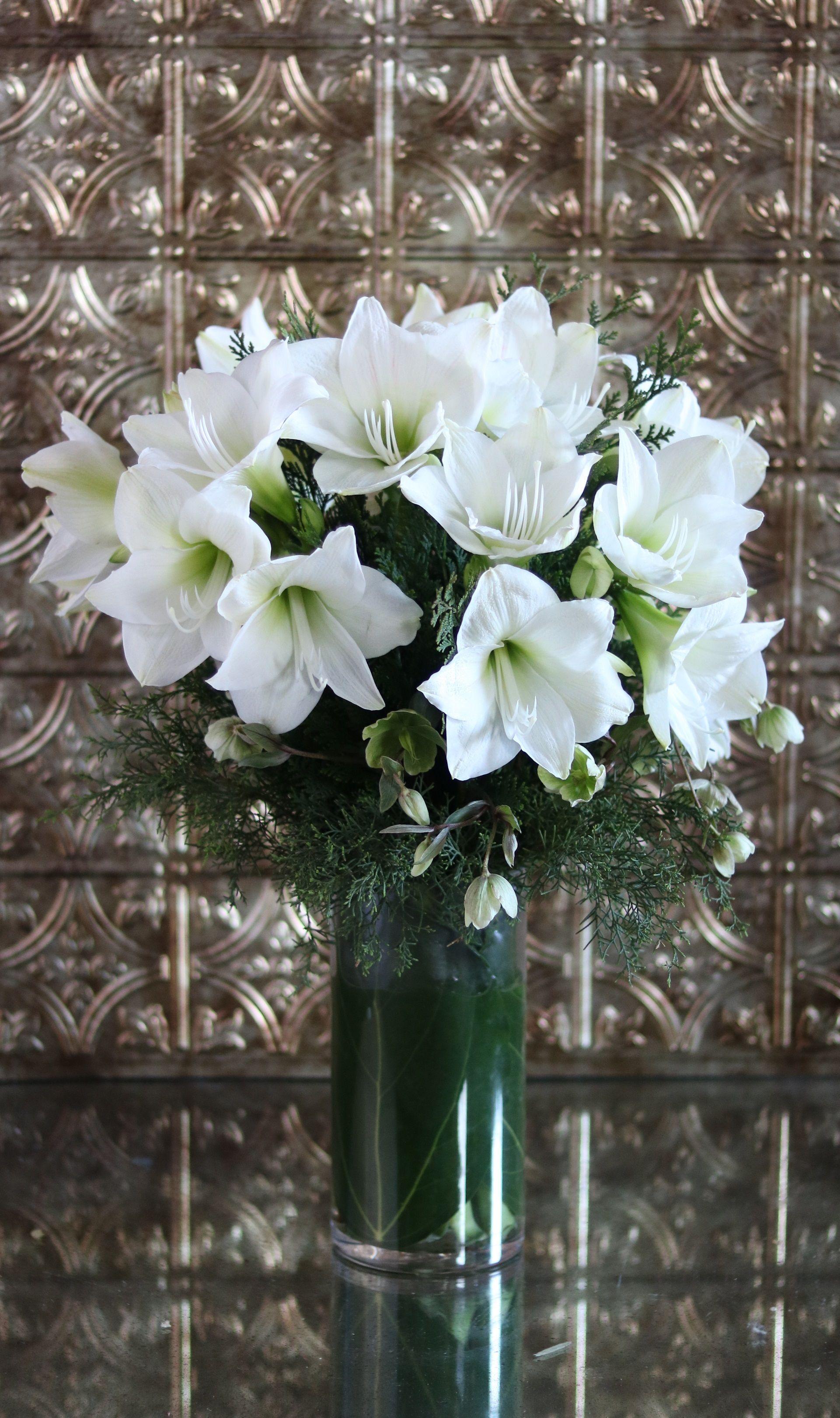 Full White Amaryllis Blossoms With Conifer Greens Amaryllis Joy By Winston Flower Beautiful Flower Arrangements Same Day Flower Delivery Flower Arrangements