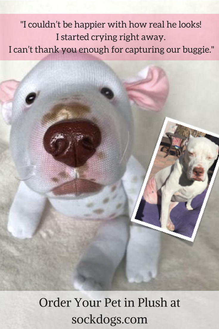 Hold Onto Your Pet S Memory Forever With An Artfully Crafted Plush Replica Original Sock Dogs Are Huggable Deta In 2020 Pet Memorial Ideas Dogs Dog Replica Plush Dog