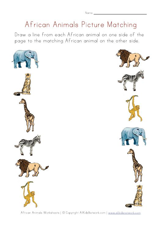 worksheets for preschoolers matching animals view and print your african animals picture. Black Bedroom Furniture Sets. Home Design Ideas