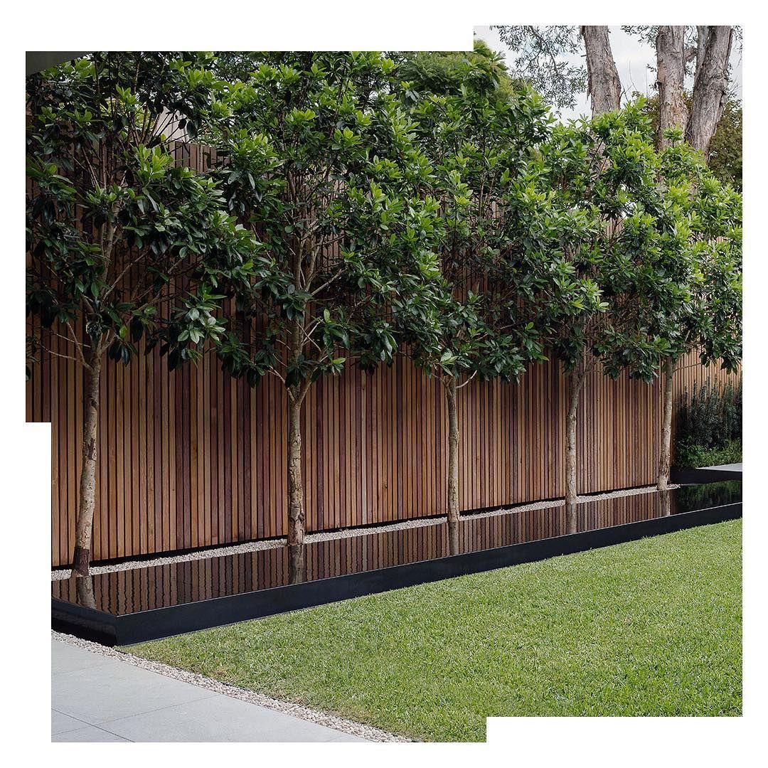 "Secret Gardens on Instagram ""REFLECTION SECTION"