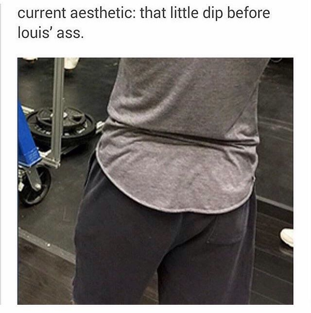Louis's ass dip is my aesthetic.