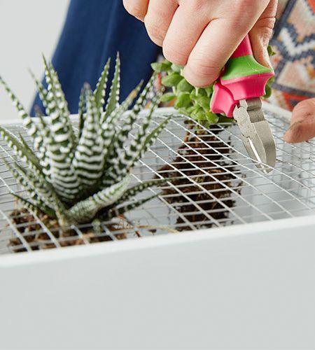 Vertikaler Garten für innen #vertikalergemüsegarten