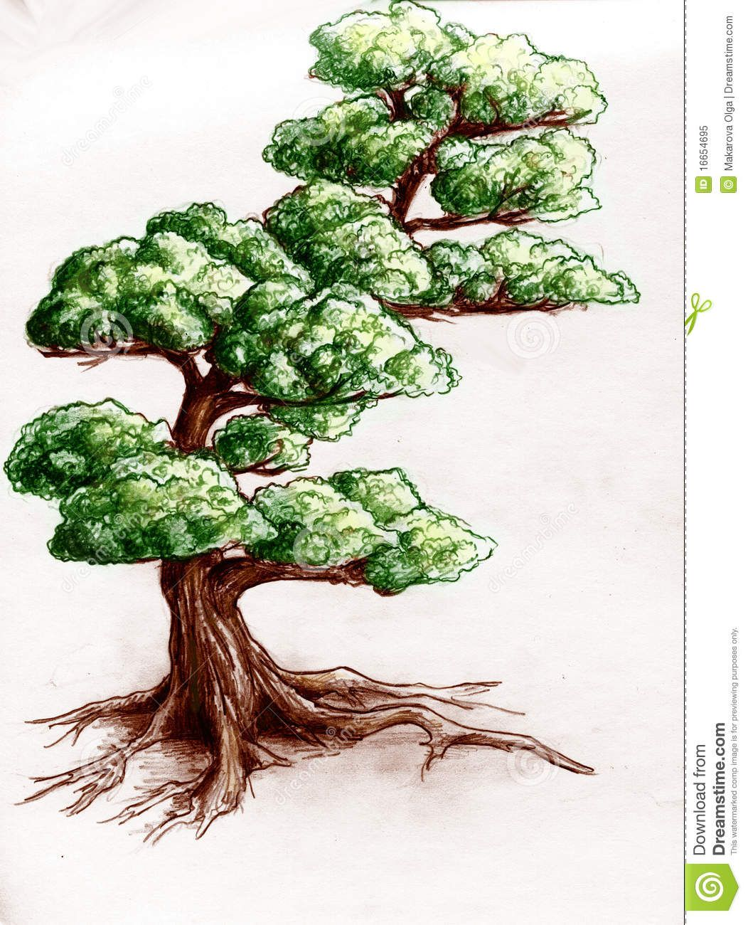 tree drawings color - Google Search | Concentration ideas ... for Tree Drawing With Color  53kxo