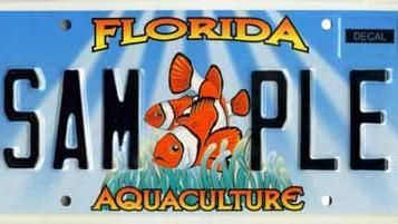 Florida Aquaculture Specialty License Plates License Plate Florida License Plates