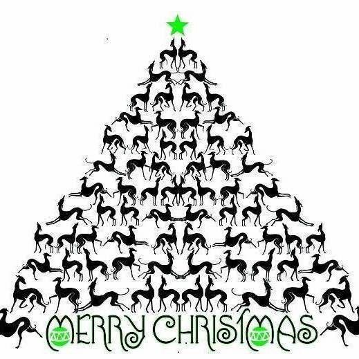 Greyhound Christmas Greyhound Art Grey Hound Dog Whippet Dog